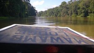 Costa Rica Tortuguero River
